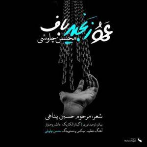 دانلود آهنگ جدید محسن چاوشی بنام عمو زنجیر باف