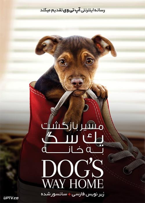 دانلود فیلم A Dogs Way Home 2019 مسیر بازگشت یک سگ به خانه با زیرنویس فارسی