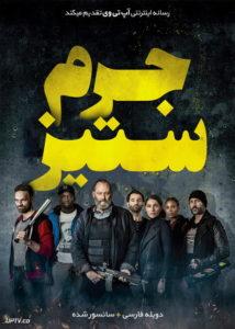 دانلود فیلم Antigang 2015 جرم ستیز با دوبله فارسی