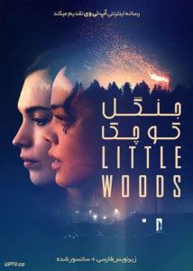 دانلود فیلم Little Woods 2018 جنگل کوچک با زیرنویس فارسی