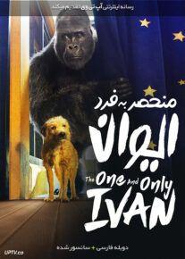 دانلود فیلم The One and Only Ivan 2020 ایوان منحصر به فرد با دوبله فارسی