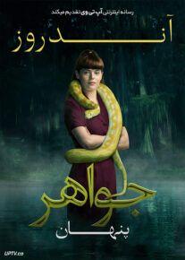 دانلود فیلم Andrews Hidden Jewel 2021 جواهر پنهان آندروز با زیرنویس فارسی