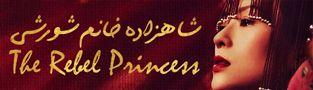 سریال The Rebel Princess